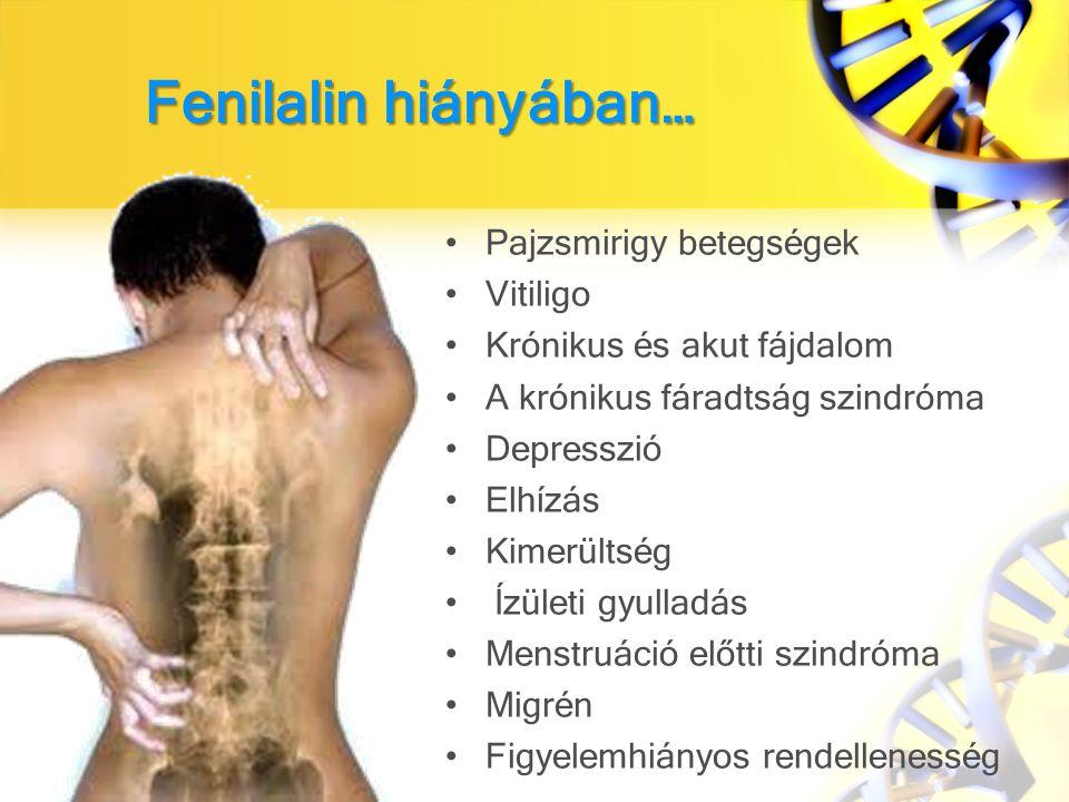 Fenilalin hiányában… Pajzsmirigy betegségek Vitiligo Krónikus és akut fájdalom A krónikus fáradtság szindróma Depresszió Elhízás Kimerültség Ízületi gyulladás Menstruáció előtti szindróma Мigrén Figyelemhiányos rendellenesség
