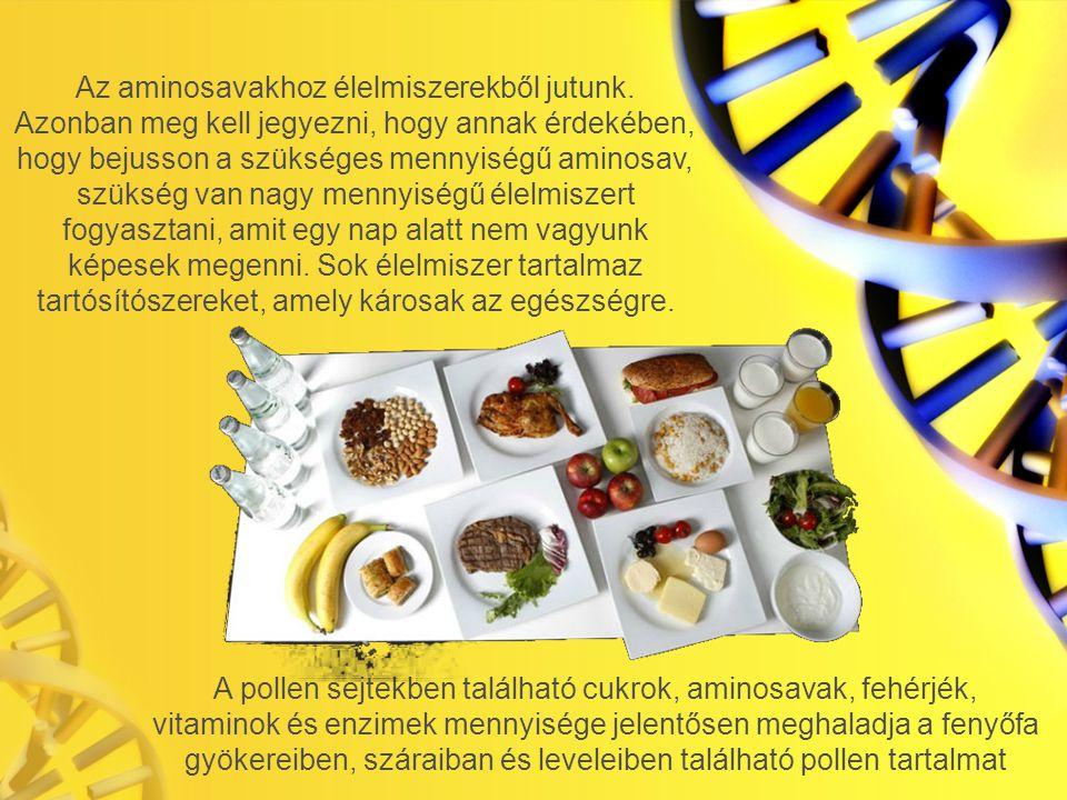 Az aminosavakhoz élelmiszerekből jutunk.