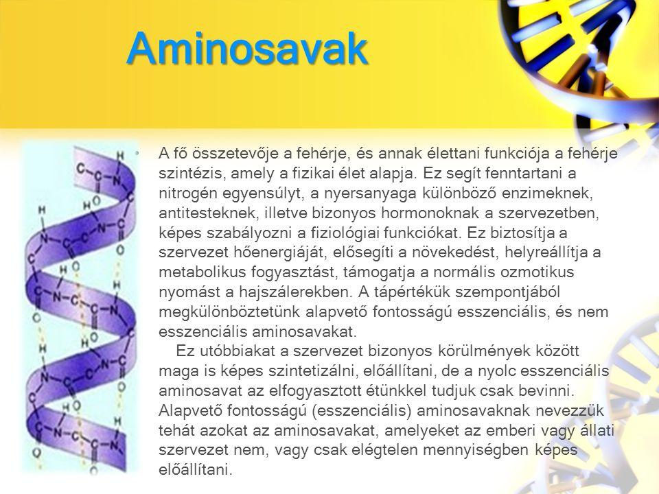 Aminosavak A fő összetevője a fehérje, és annak élettani funkciója a fehérje szintézis, amely a fizikai élet alapja.
