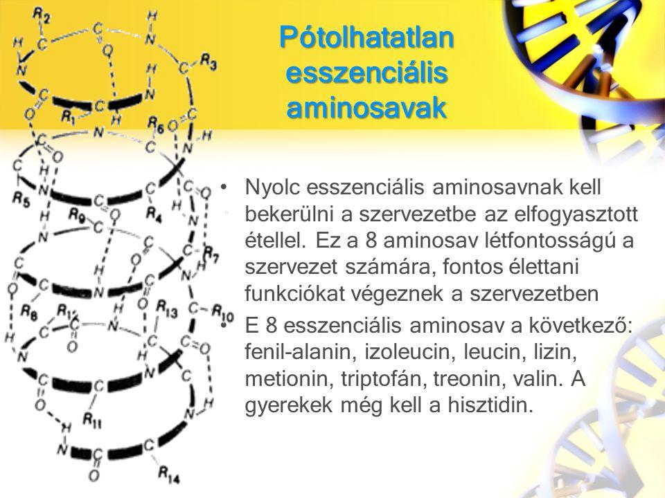 Pótolhatatlan esszenciális aminosavak Nyolc esszenciális aminosavnak kell bekerülni a szervezetbe az elfogyasztott étellel.