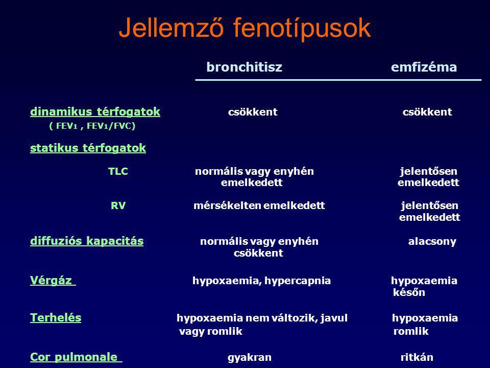 Jellemző fenotípusok bronchitisz emfizéma dinamikus térfogatok csökkent csökkent ( FEV 1, FEV 1 /FVC) statikus térfogatok TLC normális vagy enyhén jel