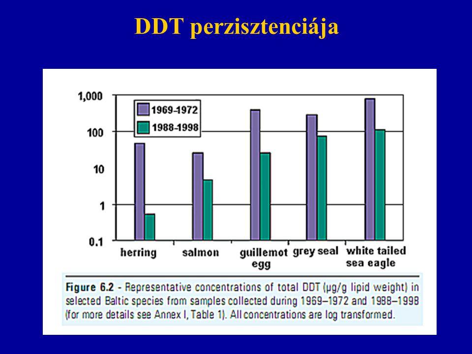 DDT perzisztenciája