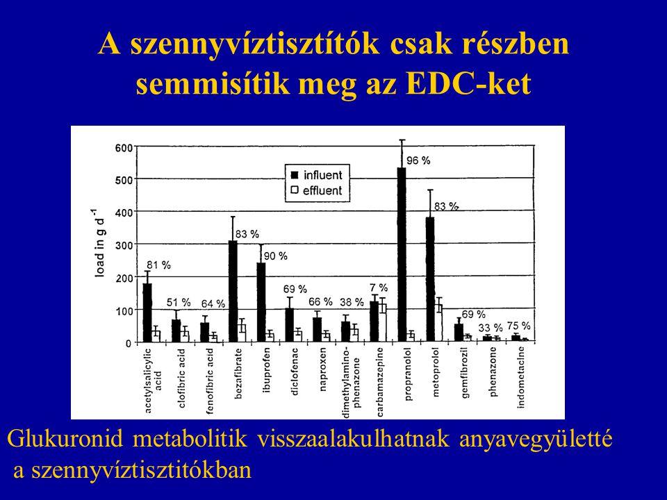 A szennyvíztisztítók csak részben semmisítik meg az EDC-ket Glukuronid metabolitik visszaalakulhatnak anyavegyületté a szennyvíztisztitókban