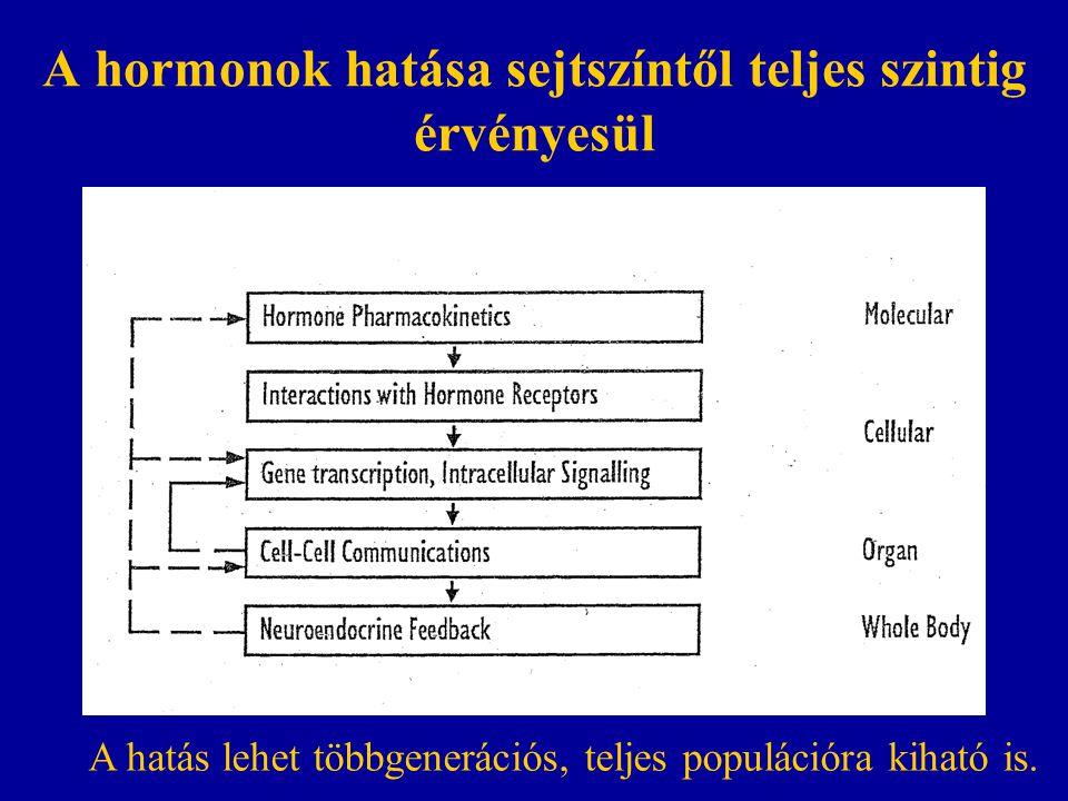 A hormonok hatása sejtszíntől teljes szintig érvényesül A hatás lehet többgenerációs, teljes populációra kiható is.