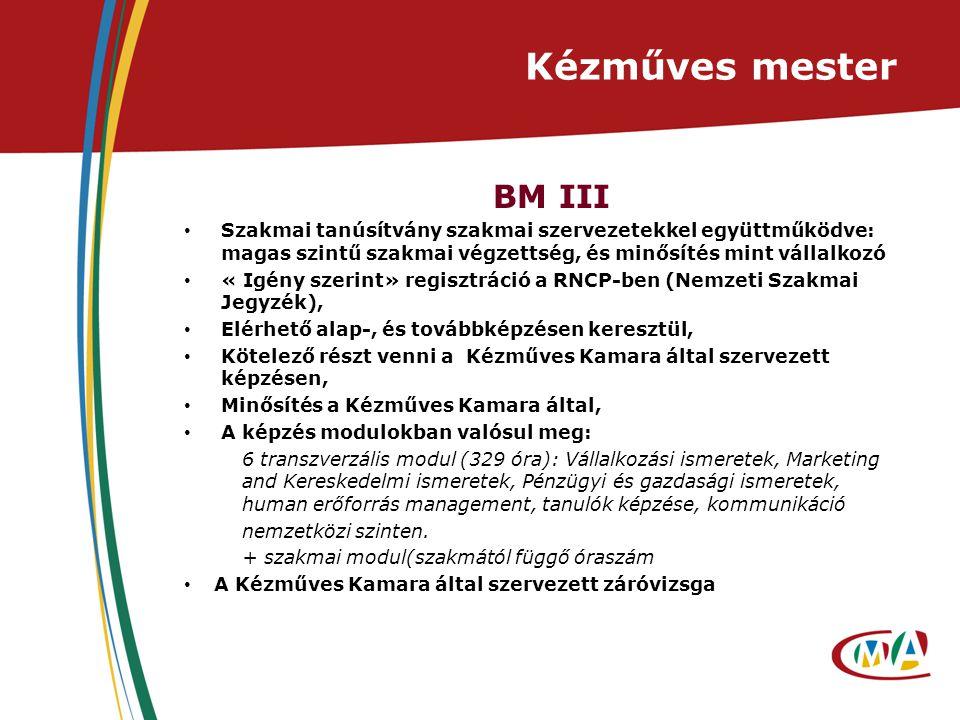 Kézműves mester BM III Szakmai tanúsítvány szakmai szervezetekkel együttműködve: magas szintű szakmai végzettség, és minősítés mint vállalkozó « Igény szerint» regisztráció a RNCP-ben (Nemzeti Szakmai Jegyzék), Elérhető alap-, és továbbképzésen keresztül, Kötelező részt venni a Kézműves Kamara által szervezett képzésen, Minősítés a Kézműves Kamara által, A képzés modulokban valósul meg: 6 transzverzális modul (329 óra): Vállalkozási ismeretek, Marketing and Kereskedelmi ismeretek, Pénzügyi és gazdasági ismeretek, human erőforrás management, tanulók képzése, kommunikáció nemzetközi szinten.