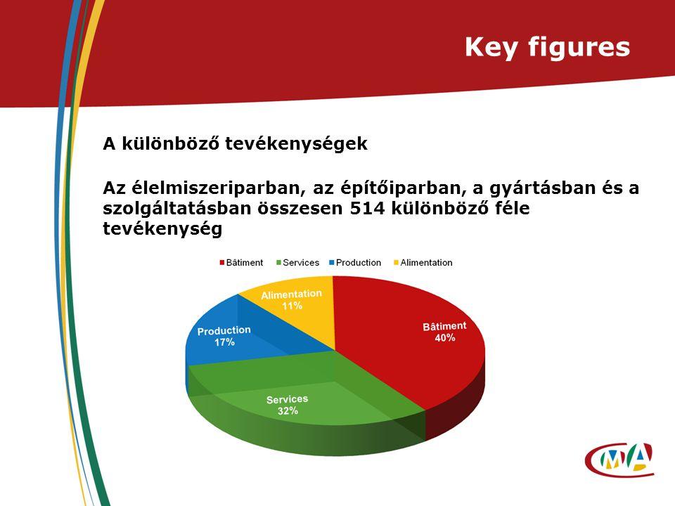 Key figures A különböző tevékenységek Az élelmiszeriparban, az építőiparban, a gyártásban és a szolgáltatásban összesen 514 különböző féle tevékenység