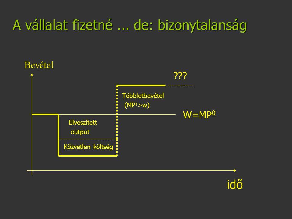 A vállalat fizetné... de: bizonytalanság W=MP 0 Elveszített output Közvetlen költség Többletbevétel (MP 1 >w) idő ??? Bevétel