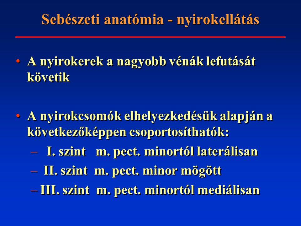 Sebészeti anatómia - beidegzés Nn.supraclaviculares (plexus cervicalis) Nn.
