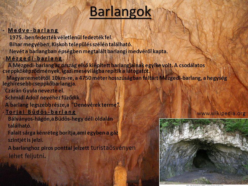 - Medve-barlang 1975.-ben fedezték véletlenül fedezték fel. Bihar megyében, Kiskoh település szélén található. Nevét a barlangban épségben megtalált b