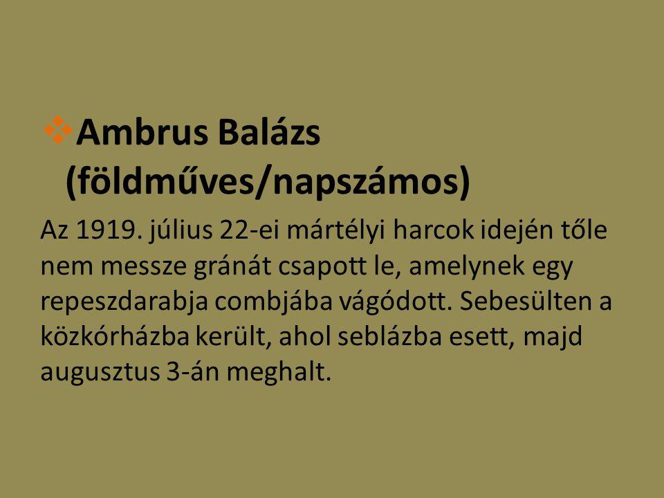  Ambrus Balázs (földműves/napszámos) Az 1919.