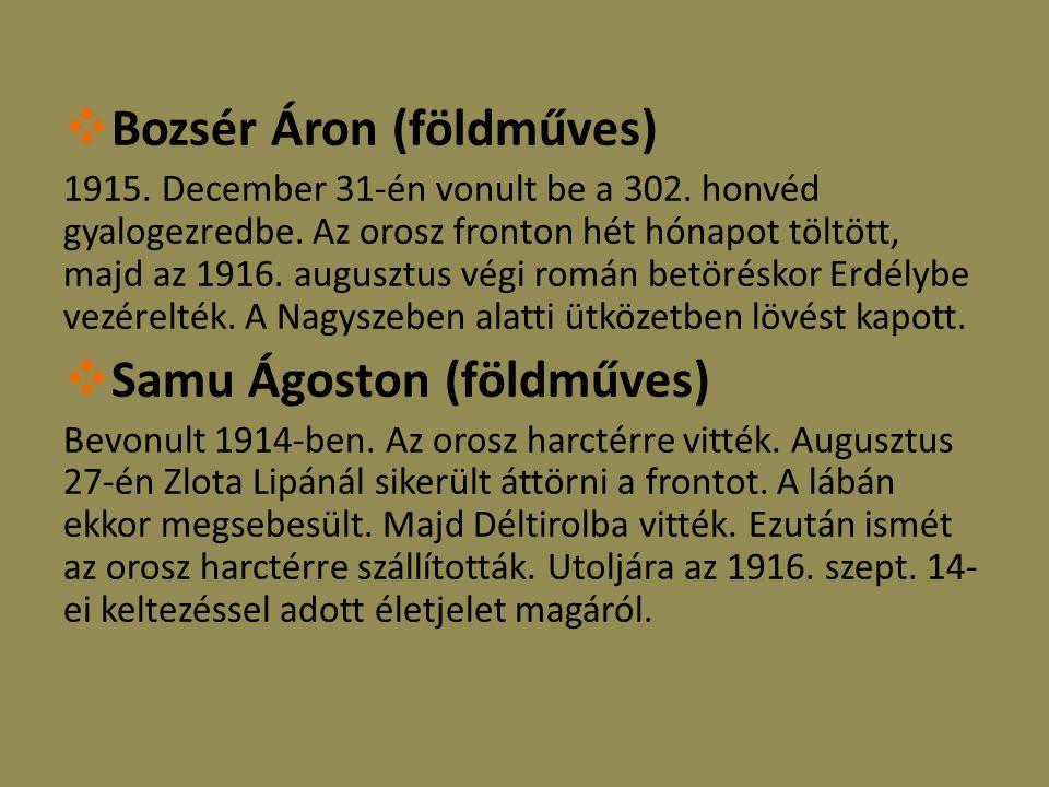  Bozsér Áron (földműves) 1915. December 31-én vonult be a 302.