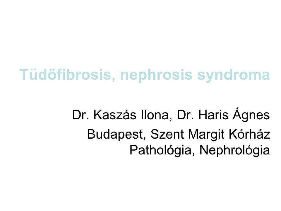 Tüdőfibrosis, nephrosis syndroma Dr. Kaszás Ilona, Dr. Haris Ágnes Budapest, Szent Margit Kórház Pathológia, Nephrológia