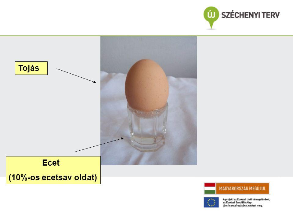 Tojás Ecet (10%-os ecetsav oldat)
