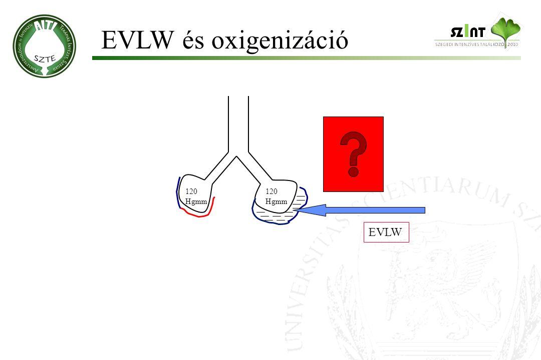 EVLW és oxigenizáció Molnár '99 120 Hgmm 120 Hgmm EVLW