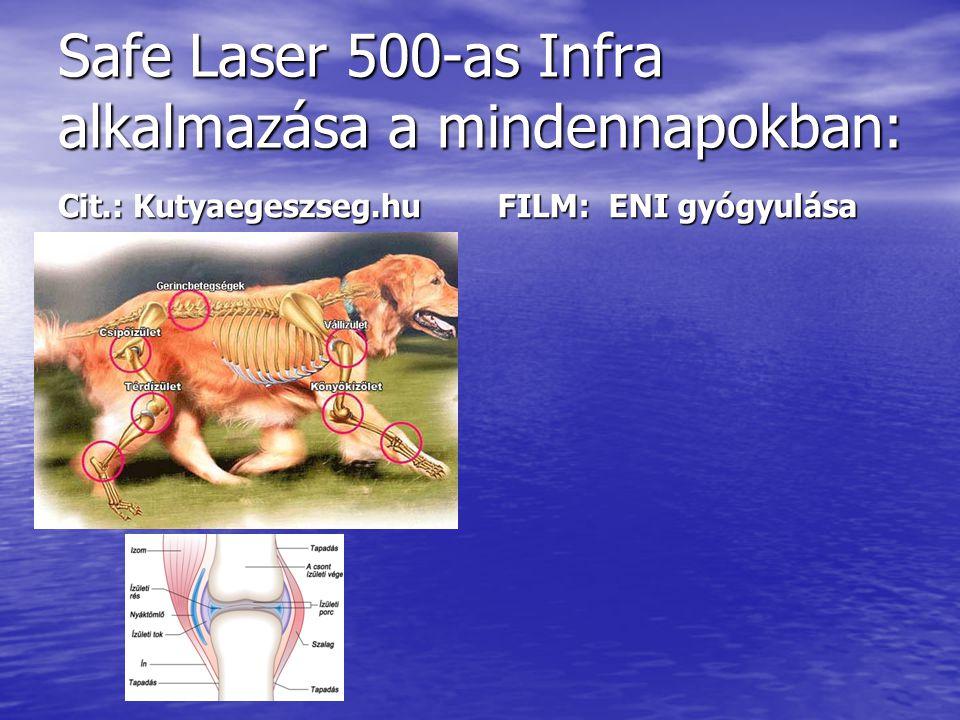 Safe Laser 500-as Infra alkalmazása a mindennapokban: Cit.: Kutyaegeszseg.hu FILM: ENI gyógyulása