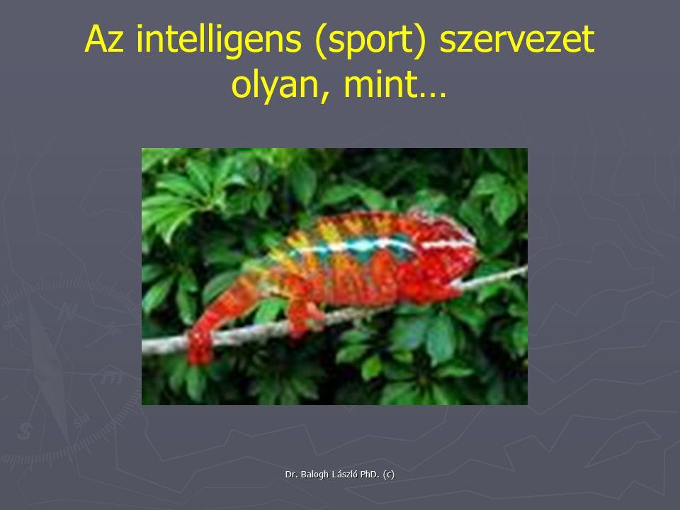 Dr. Balogh László PhD. (c) Az intelligens (sport) szervezet olyan, mint…
