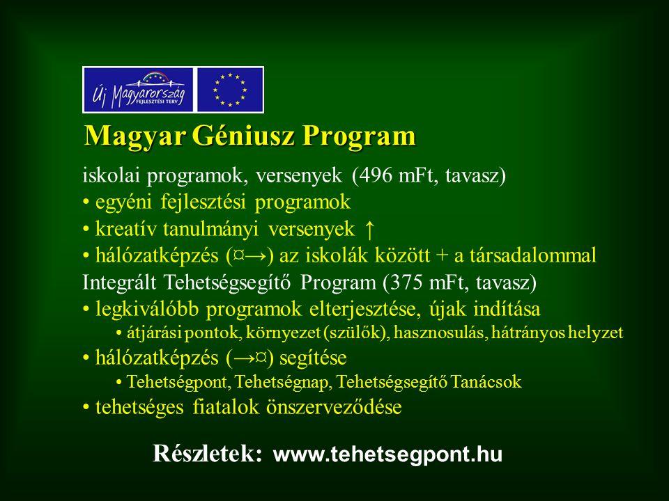 Magyar Géniusz Program iskolai programok, versenyek (496 mFt, tavasz) egyéni fejlesztési programok kreatív tanulmányi versenyek ↑ hálózatképzés (¤→) az iskolák között + a társadalommal Integrált Tehetségsegítő Program (375 mFt, tavasz) legkiválóbb programok elterjesztése, újak indítása átjárási pontok, környezet (szülők), hasznosulás, hátrányos helyzet hálózatképzés (→¤) segítése Tehetségpont, Tehetségnap, Tehetségsegítő Tanácsok tehetséges fiatalok önszerveződése Részletek: www.tehetsegpont.hu