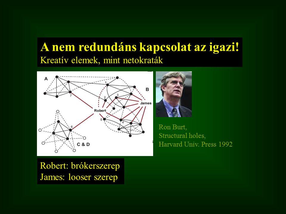 Robert: brókerszerep James: looser szerep A nem redundáns kapcsolat az igazi! Kreatív elemek, mint netokraták Ron Burt, Structural holes, Harvard Univ