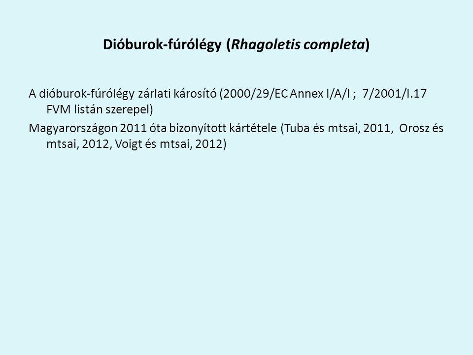 Dióburok-fúrólégy (Rhagoletis completa) A dióburok-fúrólégy zárlati károsító (2000/29/EC Annex I/A/I ; 7/2001/I.17 FVM listán szerepel) Magyarországon 2011 óta bizonyított kártétele (Tuba és mtsai, 2011, Orosz és mtsai, 2012, Voigt és mtsai, 2012)