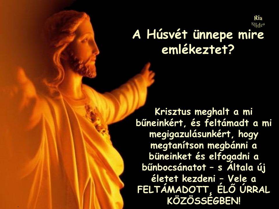 a SZERETET megszületése?.