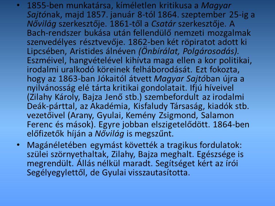 1855-ben munkatársa, kíméletlen kritikusa a Magyar Sajtónak, majd 1857. január 8-tól 1864. szeptember 25-ig a Nővilág szerkesztője. 1861-től a Csatár