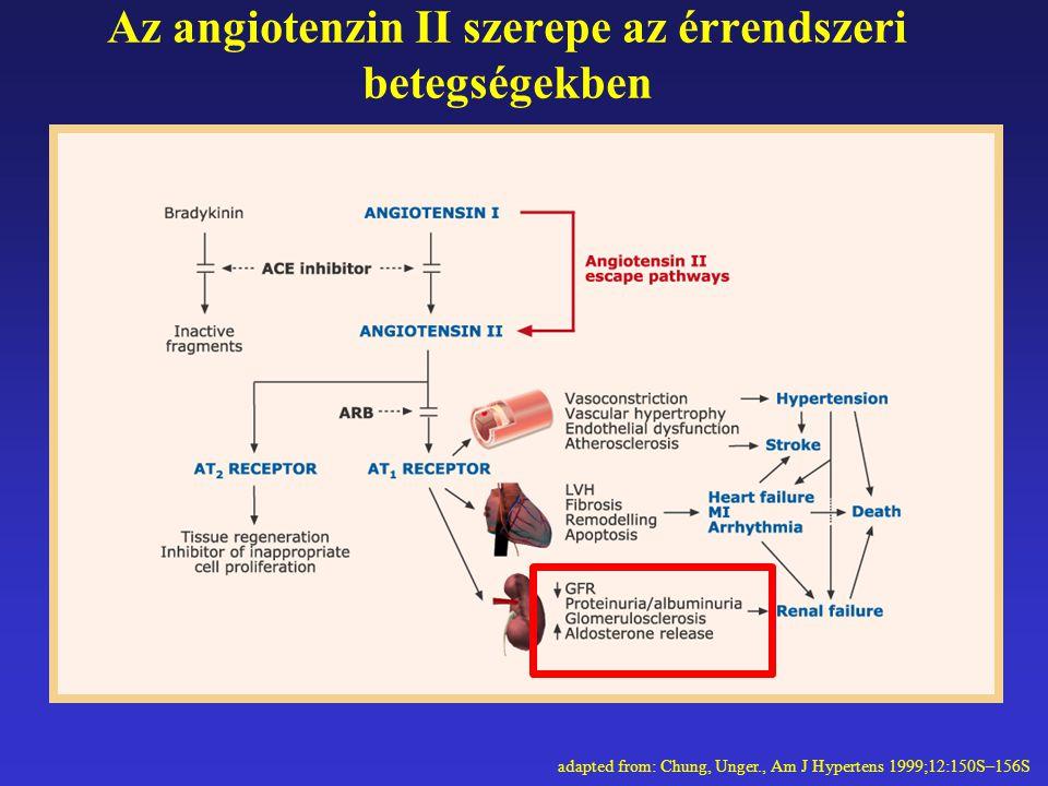 Az angiotenzin II szerepe az érrendszeri betegségekben adapted from: Chung, Unger., Am J Hypertens 1999;12:150S–156S