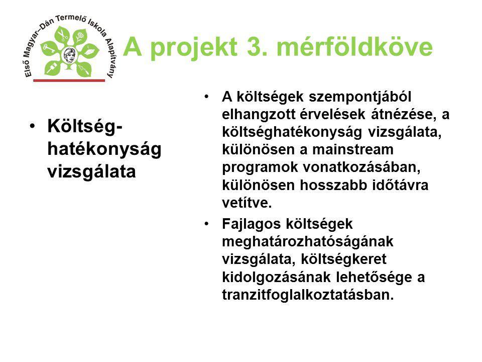 A projekt 3. mérföldköve Költség- hatékonyság vizsgálata A költségek szempontjából elhangzott érvelések átnézése, a költséghatékonyság vizsgálata, kül