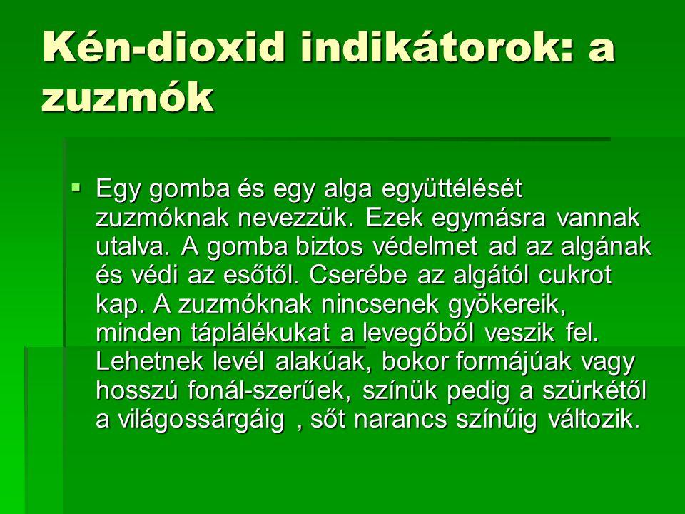Kén-dioxid indikátorok: a zuzmók  Egy gomba és egy alga együttélését zuzmóknak nevezzük.