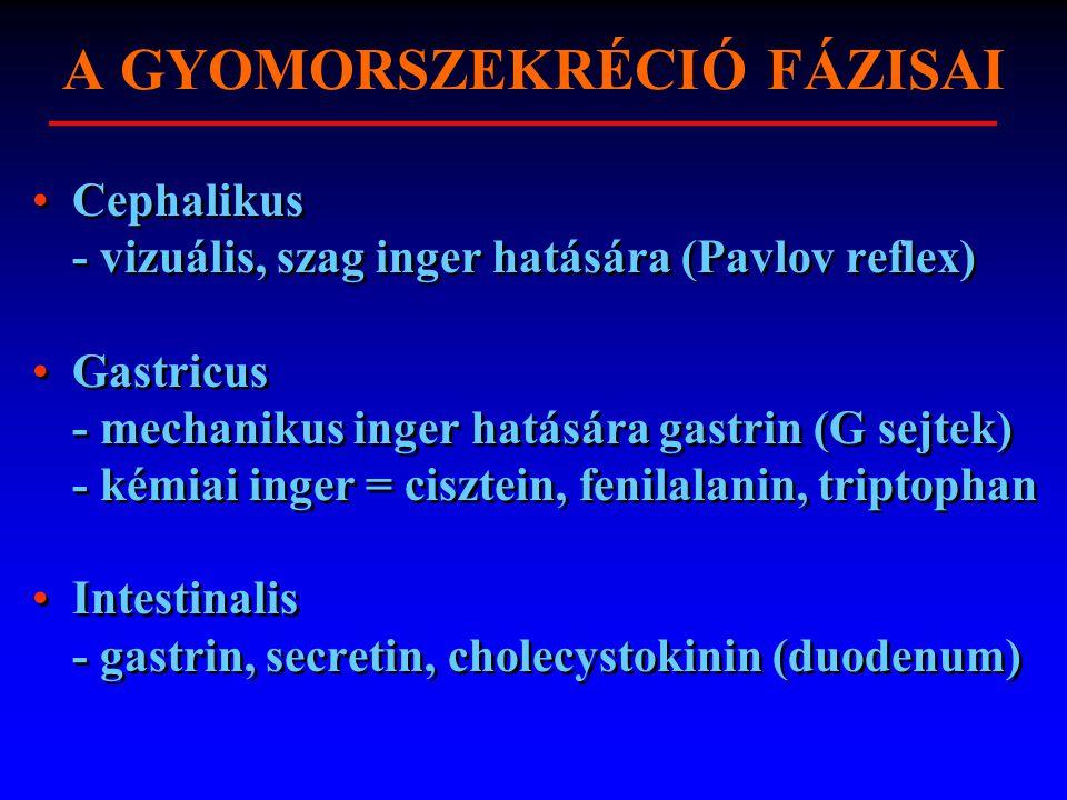 A GYOMORSZEKRÉCIÓ FÁZISAI Cephalikus - vizuális, szag inger hatására (Pavlov reflex) Gastricus - mechanikus inger hatására gastrin (G sejtek) - kémiai