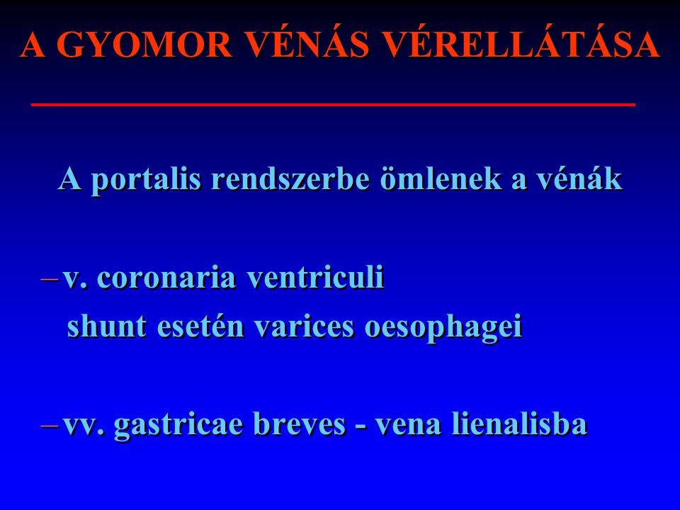 A GYOMOR VÉNÁS VÉRELLÁTÁSA A portalis rendszerbe ömlenek a vénák –v. coronaria ventriculi shunt esetén varices oesophagei –vv. gastricae breves - vena