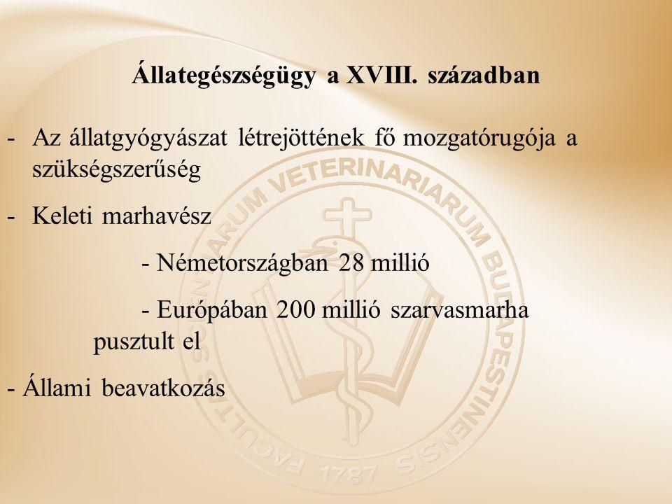 Állategészségügy a XVIII. században -Az állatgyógyászat létrejöttének fő mozgatórugója a szükségszerűség -Keleti marhavész - Németországban 28 millió
