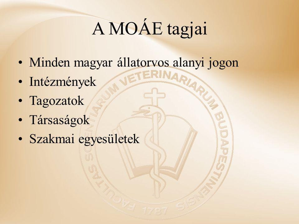 A MOÁE tagjai Minden magyar állatorvos alanyi jogon Intézmények Tagozatok Társaságok Szakmai egyesületek
