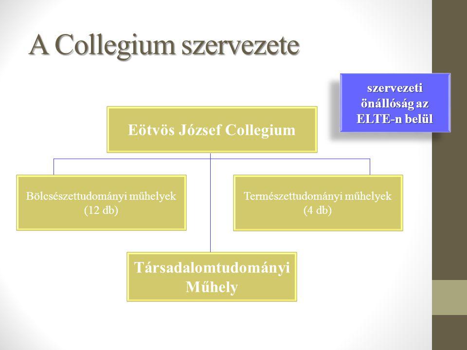 A Collegium szervezete Eötvös József Collegium Társadalomtudományi Műhely Bölcsészettudományi műhelyek (12 db) Természettudományi műhelyek (4 db) szervezeti önállóság az ELTE-n belül