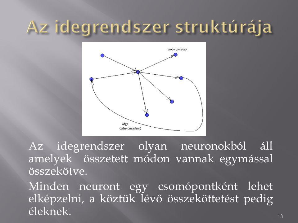 Az idegrendszer olyan neuronokból áll amelyek összetett módon vannak egymással összekötve. Minden neuront egy csomópontként lehet elképzelni, a köztük
