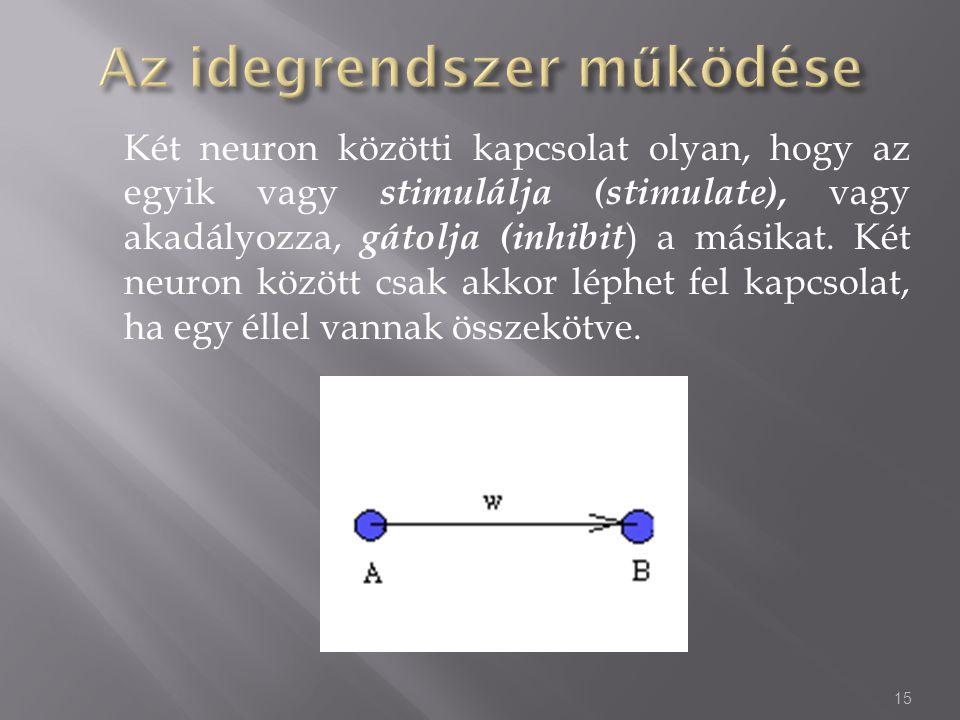 Két neuron közötti kapcsolat olyan, hogy az egyik vagy stimulálja (stimulate), vagy akadályozza, gátolja (inhibit ) a másikat. Két neuron között csak