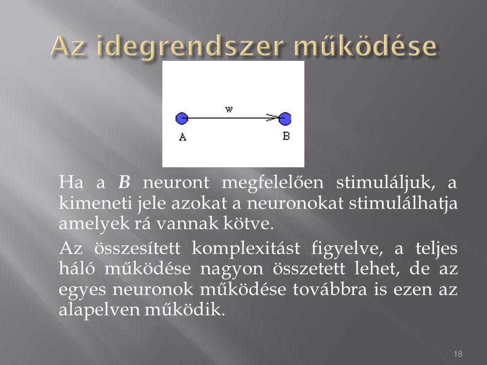 Ha a B neuront megfelelően stimuláljuk, a kimeneti jele azokat a neuronokat stimulálhatja amelyek rá vannak kötve. Az összesített komplexitást figyelv