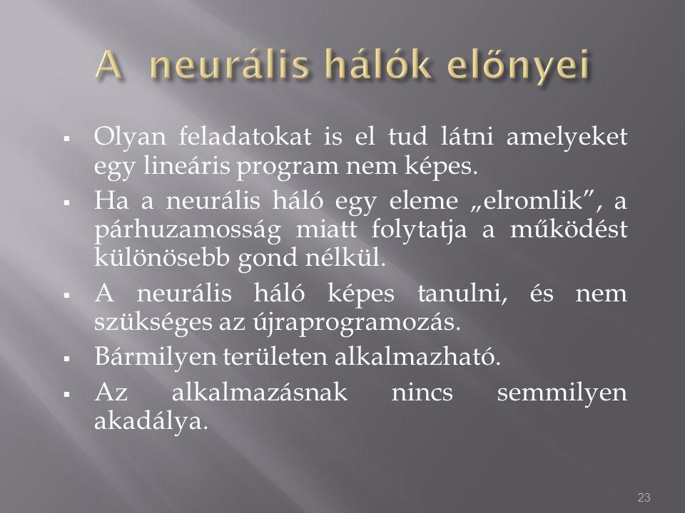 """ Olyan feladatokat is el tud látni amelyeket egy lineáris program nem képes.  Ha a neurális háló egy eleme """"elromlik"""", a párhuzamosság miatt folytat"""