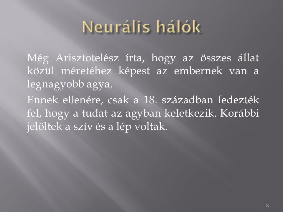 Ahhoz hogy a neurális háló működőképes legyen, tanításra van szüksége (training).