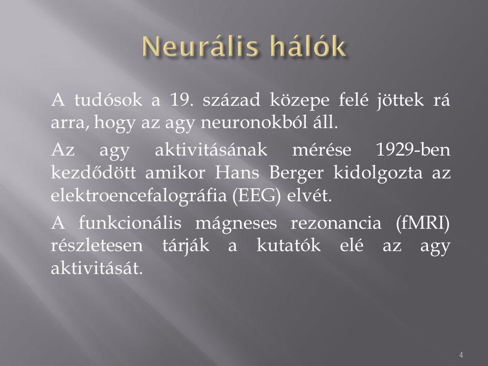 A tudósok a 19. század közepe felé jöttek rá arra, hogy az agy neuronokból áll. Az agy aktivitásának mérése 1929-ben kezdődött amikor Hans Berger kido