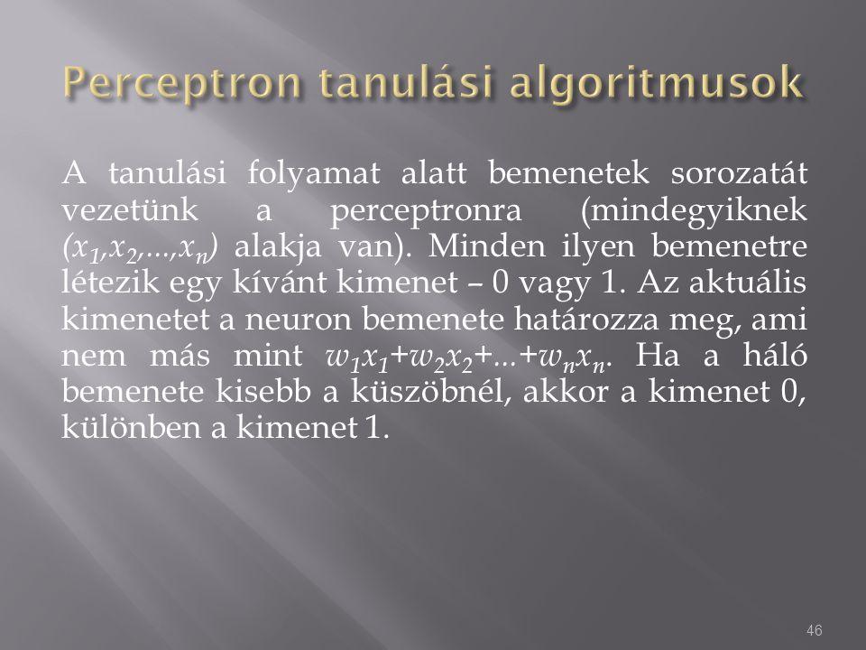 A tanulási folyamat alatt bemenetek sorozatát vezetünk a perceptronra (mindegyiknek (x 1,x 2,...,x n ) alakja van). Minden ilyen bemenetre létezik egy