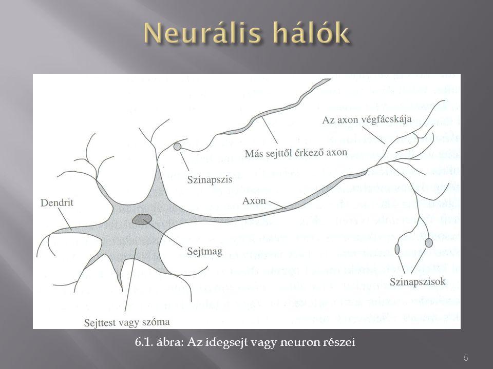Ha az A neuron a B neuronhoz van kötve egy w súlyon keresztül, és ha az A neuront megfelelő intenzitással stimuláljuk, akkor egy jelet fog küldeni a B neuronnak.