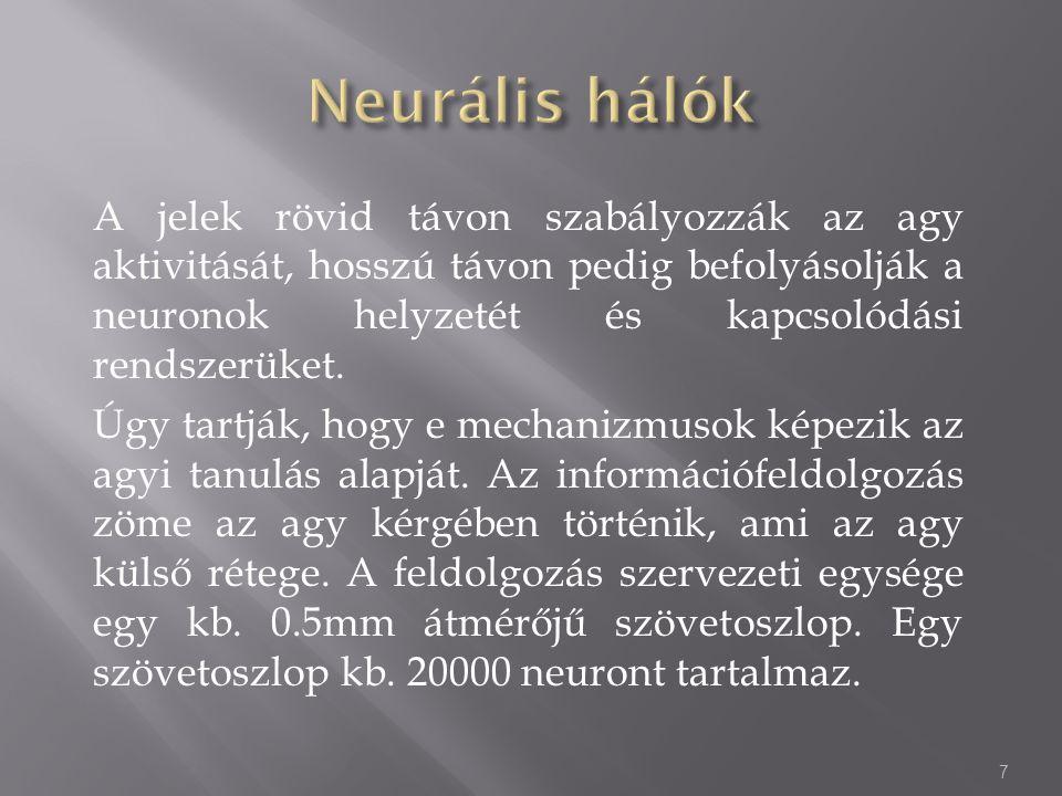 Ha a B neuront megfelelően stimuláljuk, a kimeneti jele azokat a neuronokat stimulálhatja amelyek rá vannak kötve.