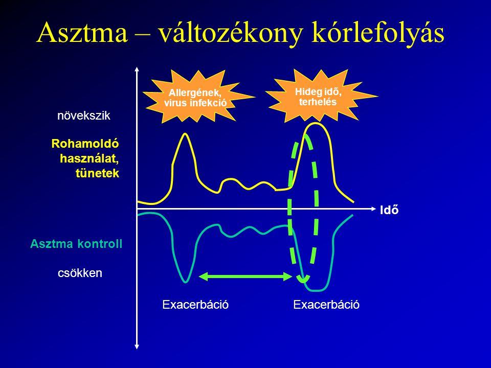 Rohamoldó használat, tünetek növekszik Asztma kontroll csökken Idő Exacerbáció Allergének, virus infekció Hideg idő, terhelés Asztma – változékony kórlefolyás
