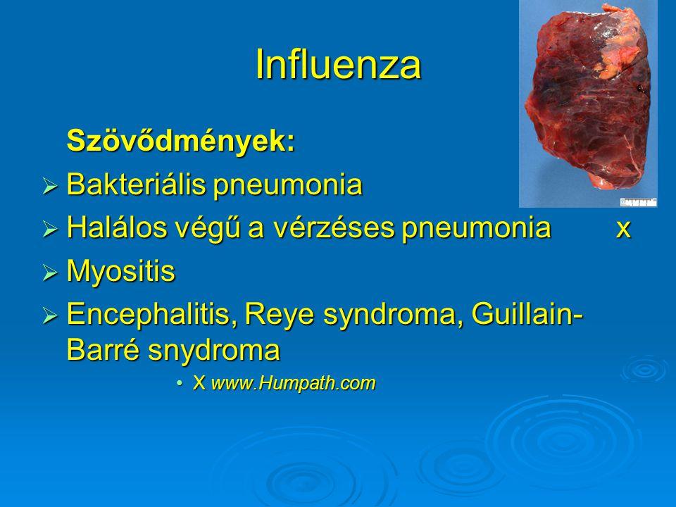 Influenza Szövődmények:  Bakteriális pneumonia  Halálos végű a vérzéses pneumonia x  Myositis  Encephalitis, Reye syndroma, Guillain- Barré snydro