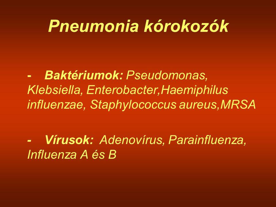 Pneumonia kórokozók -Baktériumok: Pseudomonas, Klebsiella, Enterobacter,Haemiphilus influenzae, Staphylococcus aureus,MRSA -Vírusok:Adenovírus, Parain