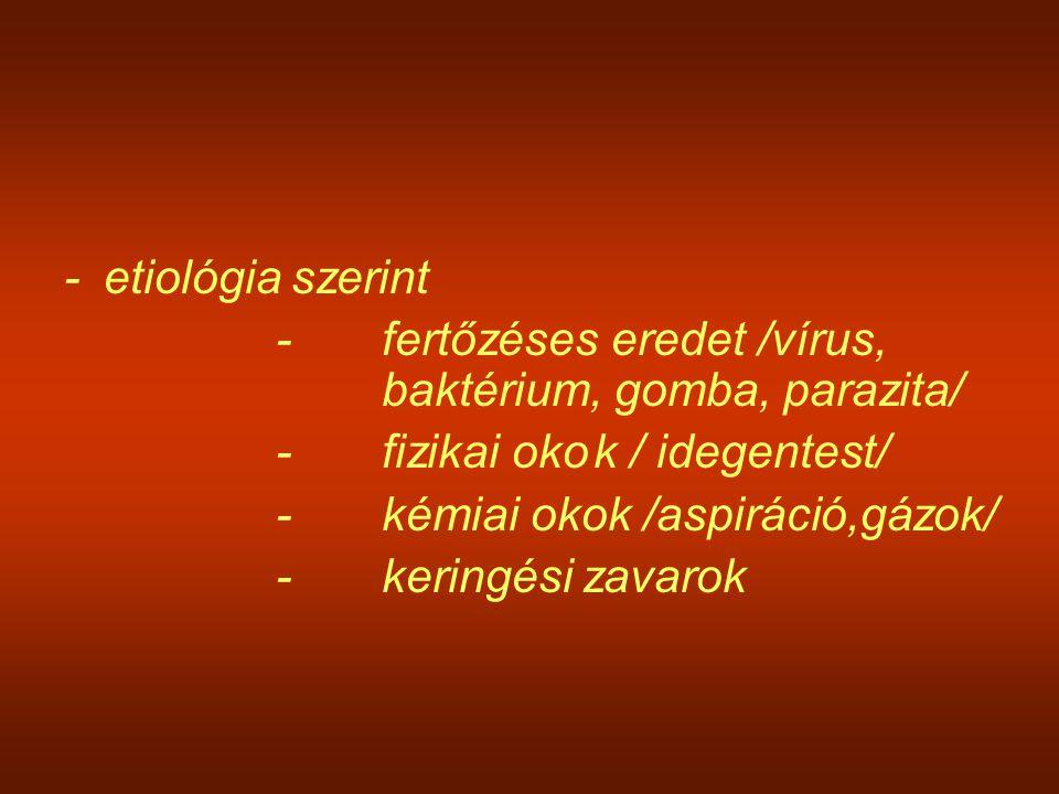 -etiológia szerint -fertőzéses eredet /vírus, baktérium, gomba, parazita/ -fizikai okok / idegentest/ -kémiai okok /aspiráció,gázok/ -keringési zavaro
