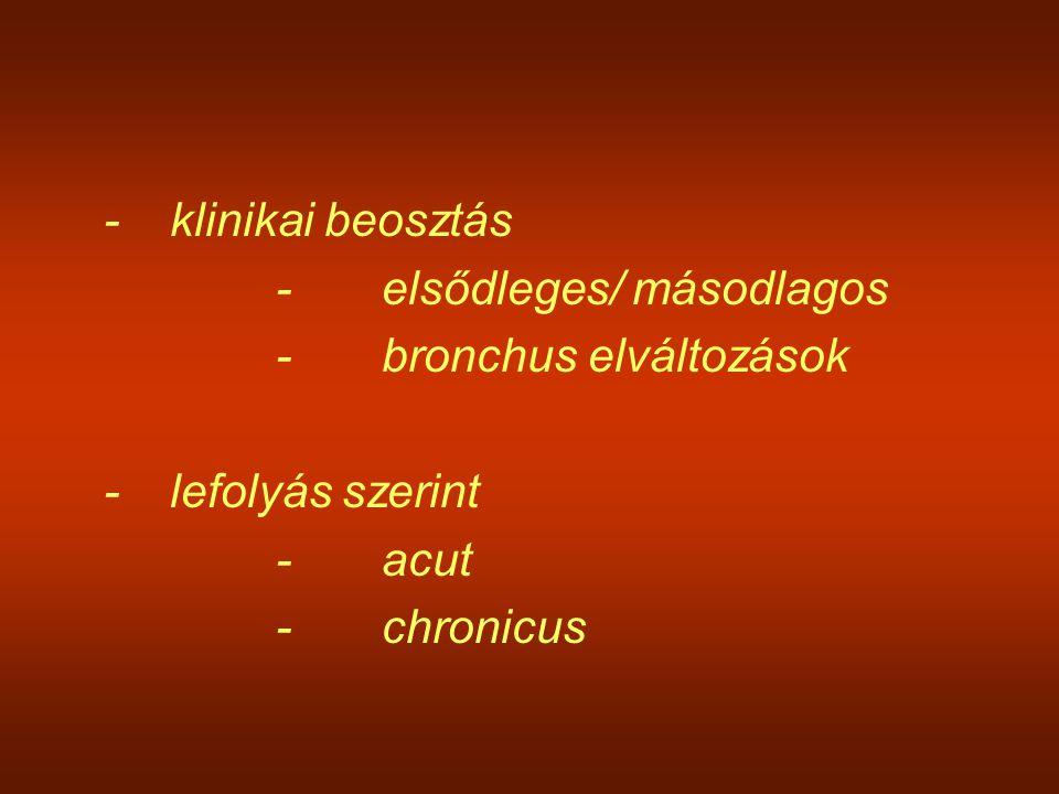 -klinikai beosztás -elsődleges/ másodlagos -bronchus elváltozások -lefolyás szerint -acut -chronicus