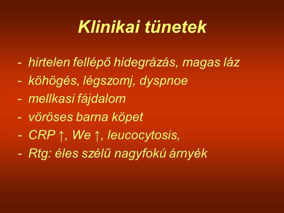 Klinikai tünetek -hirtelen fellépő hidegrázás, magas láz -köhögés, légszomj, dyspnoe -mellkasi fájdalom -vöröses barna köpet -CRP ↑, We ↑, leucocytosi