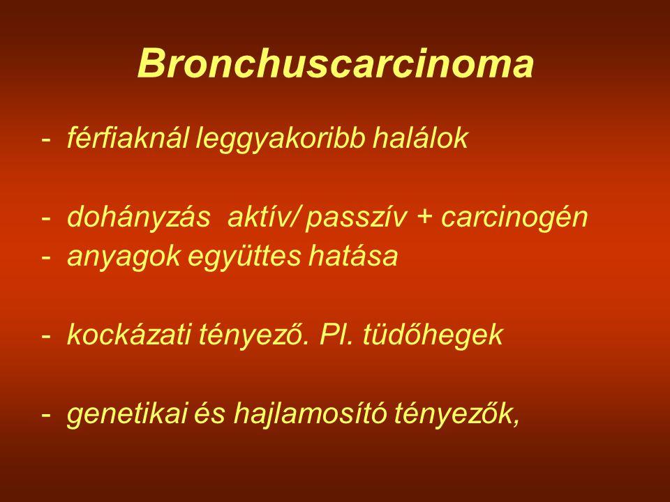 Bronchuscarcinoma -férfiaknál leggyakoribb halálok -dohányzás aktív/ passzív + carcinogén -anyagok együttes hatása -kockázati tényező. Pl. tüdőhegek -