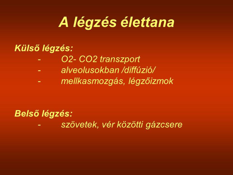 A légzés élettana Külső légzés: -O2- CO2 transzport -alveolusokban /diffúzió/ -mellkasmozgás, légzőizmok Belső légzés: -szövetek, vér közötti gázcsere